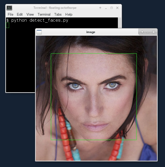 Floating Octothorpe: Face detection with OpenCV